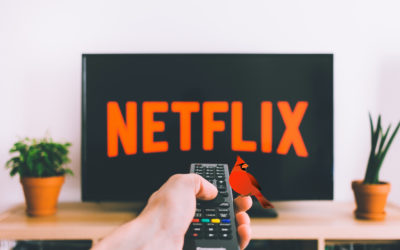Netflix Shows We Recommend during Quarantine
